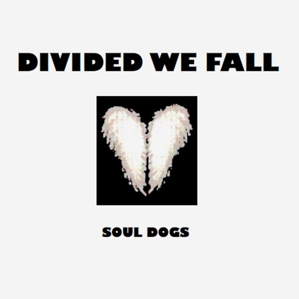 Cover art for Divided We Fall